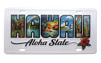 License Plate, Eddy Y, Hawaii the Aloha State