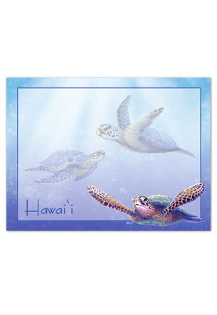 Rect. Aloha Stick'n Notes 50-sht, Sea Turtles HI