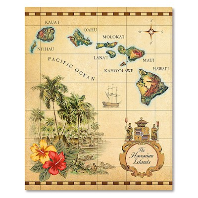 Hardcover 64-View Photo Album - Islands of Hawai'i Tan