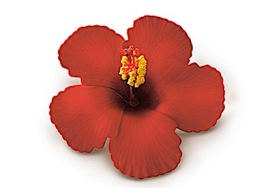 Foam Hibiscus Clip - Red