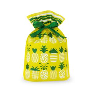Small Pineapple Parade Everyday Drawstring Gift Bag