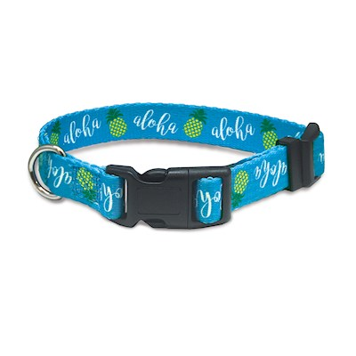 Pet Collar, Pineapple Aloha - M